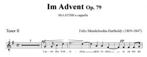 Im Advent Op. 79 - SSAATTBB - tenor II